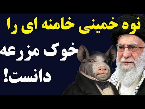 حسن خمینی ، خامنه ای را با خوک های قلعه حیوانات مقایسه کرد