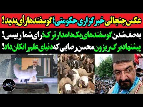 عکس جنجالی خبرگزاری حکومتی: گوسفندها رای بدهید! حرکت جالب دامدار ترک که حکومت را با خاک یکسان کرد!