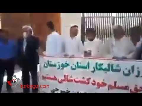 تجمع اعتراضی کشاورزان شالیکار خوزستان و روستای مراونه