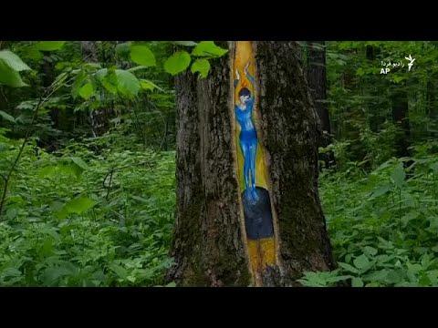 پروژه هنر پارک چیست؟
