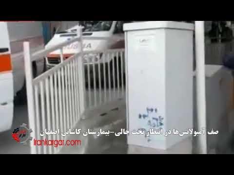 کابوس پیک پنجم کرونا بر سر شهرهای ایران با ۳۷۸ مرگ در یک روز - فیلم
