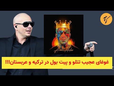 غوغای عجیب تتلو و پیت بول در ترکیه و عربستان!!!